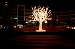Tree Decorated With Lights Royalty Free Stock Photos