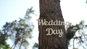 Tree decorated of wedding vintage wooden inscription wedding day. Vintage wooden inscription wedding day at forest tree stock video footage