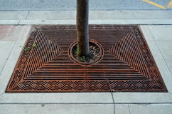 Tree in decorative sidewalk grill Royalty Free Stock Images