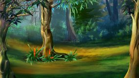 Tree in a Dense Forest in a Summer Day. Large Tree in a Dense Forest in a Summer Day. Digital Painting Background, Illustration in cartoon style character royalty free illustration