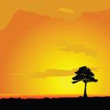 Tree on desert vector illustration Stock Photos