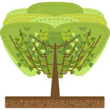 Tree design Royalty Free Stock Images