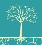 Tree design Royalty Free Stock Image