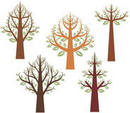 Tree design series Royalty Free Stock Photography