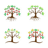Tree design. A vector drawing represents tree design with apple and love tree Stock Image