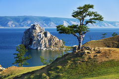 Tree of desires on Lake Baikal Royalty Free Stock Photography