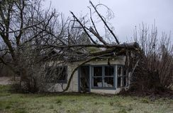 Tree destroys a home in Wolf Creek, Oregon stock photos