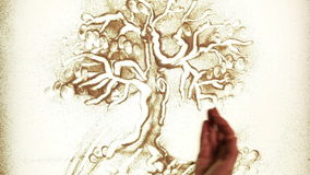 Tree in different seasons. Sand drawing of a tree in different seasons stock video