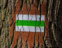 Tree direction signpost Stock Photography