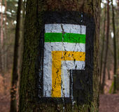 Tree direction signpost Royalty Free Stock Photo
