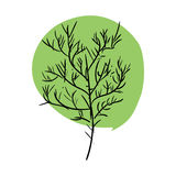 Tree doodle isolated. Green leaves and stem on white background Stock Photos