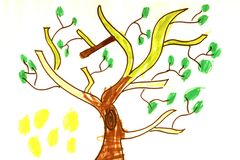Tree drawing of baby Royalty Free Stock Images