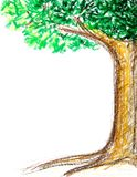 Tree Drawing with Crayon Stock Images