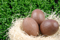 Tree Easter Eggs in the nest stock image