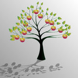 Tree-Ecology Royalty Free Stock Image