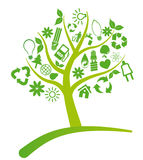 Tree ecology Royalty Free Stock Images