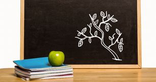 Tree Education drawing on blackboard with apple for school. Digital composite of Tree Education drawing on blackboard with apple for school stock image