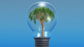 Tree in an electric lamp Stock Photo