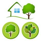 Tree emblem 6 Stock Images