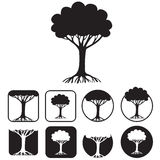 Tree emblem Royalty Free Stock Images