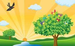 Tree, fåglar och sunstrålar Arkivfoton