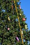 tree för 2 jul arkivbild