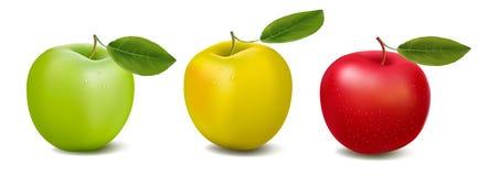 tree för avstånd för design för kopia för äpplefärgbegrepp royaltyfri illustrationer