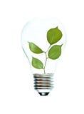tree för for för glödande lampa för kula arkivfoton
