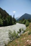 tree för flod för caucasus liggandeberg stenig Royaltyfria Foton