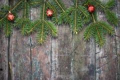 tree för gran för bakgrundsjul festlig Royaltyfri Bild
