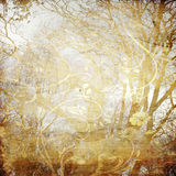 tree för konstbakgrundsgrunge Fotografering för Bildbyråer
