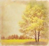 tree för signal för sepia för effektgrungeillustration retro stock illustrationer