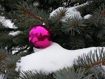 tree för snow för prydnad för godisrottingjul Royaltyfri Fotografi