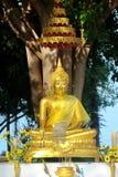 tree för staty för bodhibuddha meditation under Arkivbild