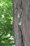 Tree with a face Stock Photos