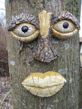 Tree face Royalty Free Stock Images