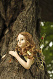 Tree fairy Stock Photos