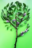 Tree. Stock Photography