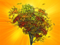 Tree with falling leaves, illustration Royalty Free Stock Photography