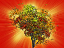 Tree with falling leaves, illustration Stock Images