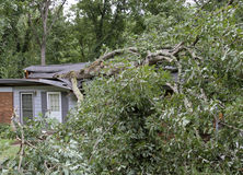 Tree Falls and Demolishes a Small House Royalty Free Stock Photos