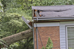 Tree Falls Into House Stock Photos