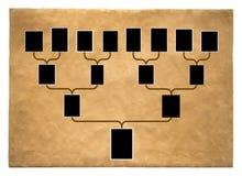 Tree of family history. Genealogical tree of family with empty frames for photos SONY DSC stock photos