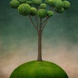 Tree. Fantasy illustration with  tree on  hill , Wonderland. Computer graphics Royalty Free Stock Photos