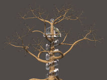 Tree, Fantasy, Spiral Staircase Royalty Free Stock Image