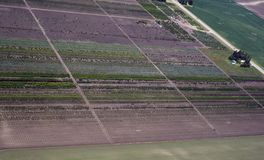 Tree farm. Aerial view of a tree farmin Western Montana USA Royalty Free Stock Photos