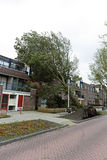 Tree fell on houses in Amsterdam the Netherlands Stock Photos