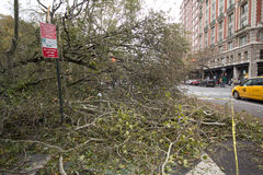 Tree felled by Hurricane Sandy, Manhattan. Tree fallen over Columbus Avenue in Upper West Side, Manhattan, the day after Hurricane Sandy Stock Images