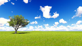 Tree field of grass and perfect sky landscape 3D rendering Royalty Free Stock Photo