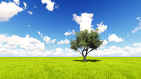 Tree field of grass and perfect sky landscape 3D rendering Stock Photo